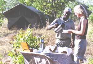 Safari in Botswana.