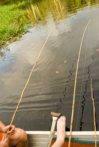 Fishing for Piranha in Brazil's Amazon Rainforest