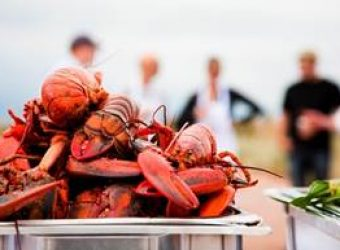 Prince Edward Island lobsters